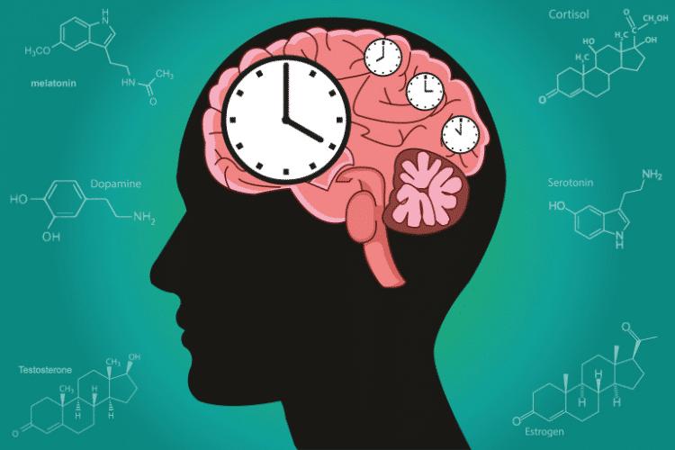 wat-doen-nachtdiensten-met-jouw-biologische-klok